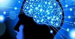 ذہن کے جسم پر اثرات