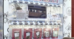 جاپان میں لذیذ کیڑے مکوڑے فراہم کرنے والی وینڈنگ مشین مقبول