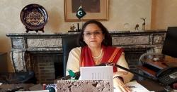 عالمی برادری پاکستان پرٹریول ایڈوائزری تبدیل کرے، نغمانہ ہاشمی