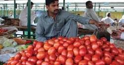 پاکستان میں لالر ٹماٹر نے ڈالر کے ساتھ ریس لگا دی