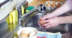 خبردار!!! انڈہ پکانے سے پہلے ہرگز نہ دھوئیں