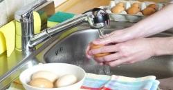 انڈےکو پکانے سے پہلے کبھی نہ دھوئیں، طبی ماہرین نے متنبہ کر دیا