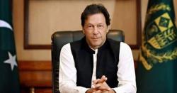 عمران خان کی مرغی پال سکیم کیوں ناکام  ہوئی تحریک انصاف نے کیا وجہ بتائی