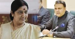 فواد چوہدری کا اندرونی معاملات میں مداخلت پر بھارتی وزیرخارجہ کو منہ توڑ جواب