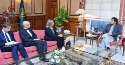یورپی یونین مقبوضہ کشمیر میں انسانی حقوق کی خلاف ورزیوں کا نوٹس لے، وزیراعظم