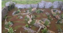 ساڑھے چھ کروڑ سال پرانا قبرستان دریافت ہو گیا  لیکن اس میں انسان نہیں بلکہ کون سی مخلوق دفن تھی
