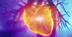 دل اور جگر کو تباہ کردینے والی ایسی غذائیں جو آپ روزانہ استعمال کرتےہیں