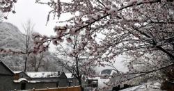 بیجنگ، برف باری کے بعد ہر شے پر سفیدی چھا گئی
