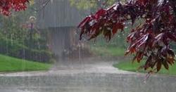 انتہائی افسو سنا ک خبر ،بارشوں اور تیزہواؤں سےدرجنو ں  افراد جاں بحق ، متعدد افراز زخمی