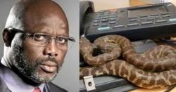 دفتر میں زہریلے سانپ آن دھمکے، افریقی صدر کو حکومت گھر سے چلانا پڑ رہی ہے