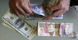 ڈالر کی قیمت میں20پیسے کا اضافہ ریکارڈ کیا گیا