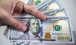 ڈالر کی قدر میں اضافہ کی خبریں، گوگل پر ڈالر تاحال 141 روپے کا
