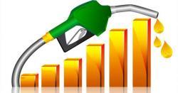 پٹرولیم مصنوعات کی قیمتوں میں اضافے کے خلاف درخواست پر سماعت
