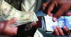 اگر دوست ملکوں سے لین دین مقامی کرنسی میں کی جائے تو ڈالر ایک ہی دن میں 10 روپے سستا ہو سکتا ہے