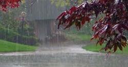 محکمہ موسمیات نے ملک بھر میں بارشوں کی نوید سُنادی