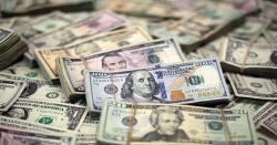 رواں مالی سال روپیہ ڈالر کے مقابلے میں اپنی قدر کھوتا رہا