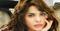 عید الفطر پر پاکستانی فلموں کی کامیاب نمائش بہترین تشہیری مہم کا نتیجہ ہے، سارہ لورین