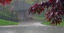 پاکستان کے کن کن علاقوں میں خوب بارش کا امکان ؟ جانیں