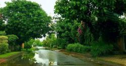 پنجاب اور کے پی میں موسلاد ھار بارش سے موسم خوشگوار ہوگیا