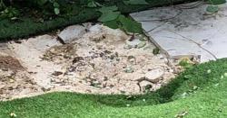 لندن کے باغ سے ملنے والی لاش کا معمہ حل ہو گیا