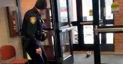 گلہری نے پولیس اسٹیشن میں کھلبلی مچادی