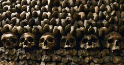 قبرستان میں قبریں کھود کر انسانی کھوپڑیاں چرانے والا گروہ پکڑا گیا