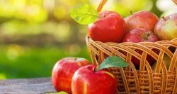 سیب جسمانی ساخت کیلئے کیوں فائدہ مند ہے؟ تحقیق میں حیرت انگیز انکشاف