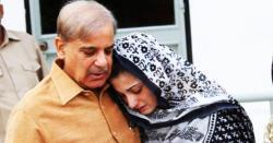 نیب نے سابق وزیر اعلیٰ پنجاب شہباز شریف کی جائیدادیں منجمد کرنے کا خط جاری کر دیا
