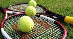 جان اسنر نے ہال آف فیم ٹینس چیمپئن شپ مینز سنگلز ٹائٹل جیت لیا