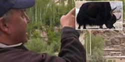 وہ گمشدہ جانور جس کی تلاش کارگل جنگ کا پیش خیمہ ثابت ہوئی، 55سالہ تاشی نامگیال کے حیرت انگیز انکشافات