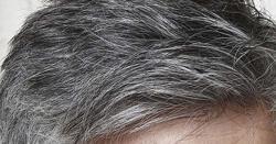 سفید بال ہونا آج کل عام سی بات ہے اور مردوخواتین دونوں ہی اس بات سے پریشان نظر آتے ہیں