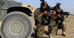افغانستا ن میں سکیورٹی فورسز کے بڑے آپریشن میں  کئی درجن طالبان کے مارے جانے کی اطلاعات