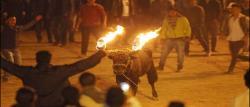 ایکواڈور میں بیلوں کیساتھ آگ کے کھیل کا تہوار