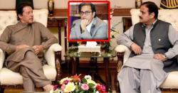 وزیر اعظم نے کہا کہ عثمان بزدار وزیر اعلیٰ نہیں تو میں ان کی وکالت نہیں کروں گا