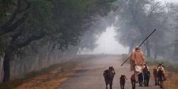 ملک کے بیشتر علاقوں میں موسم خشک لیکن۔۔۔محکمہ موسمیات نے خبر دار کردیا