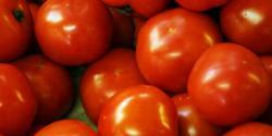 ٹماٹر مہنگے ہیں ان کا استعمال کوئی ضرور تو نہیں،کیا چیز استعمال کریں؟وفاقی وزیر نے عوام کو مشورہ دے دیا