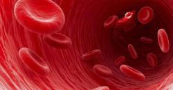 خون کی کمی اور بلڈپریشر تو دور کرتا ہی ہے مگر انارمیں موجود نمک کا تیزاب انسانی جسم میں کیا حیران تبدیلی لاتا ہے