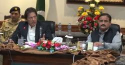 مسلم لیگ(ن) نے پنجاب حکومت کی پندرہ ماہ کی کارکردگی پر رپورٹ جاری کردی
