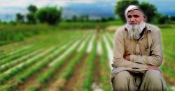 5روپے مزدوری سے 700ایکڑ کے ٹھیکے پر پہنچنے والا پاکستانی کسان ، محنت کی ایسی داستان جسے ہر پاکستانی کو ضرور پڑھنا چاہئے