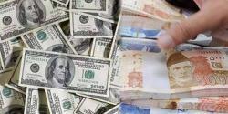 5ماہ میں ڈالر کی قیمت میں نمایاں کمی جانتے ہیں روپے کی قدر کہاں سے کہاں پہنچ گئی؟