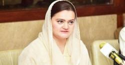 تحریک انصاف کی حکومت گرانے کی تیاریاں۔۔۔!!! ن لیگ نے 'شیڈول کابینہ' تیار کر لی، مریم اورنگزیب کا اہم ترین عہدے کیلئے انتخاب