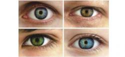 آنکھوں کے رنگ شخصیت کے عکاس