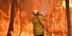 آسٹریلیا کے جنگلات میں لگی آگ پر قابو پانے کیلئے امریکی ماڈل کی انوکھی مہم