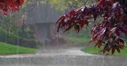 آئندہ 24 گھنٹوں کے دوران اسلام آباد اور راولپنڈی سمیت ملک کے بیشتراور بالائی علاقوں میں موسم کیسا رہے گا، جانیں