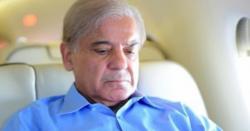 پنجاب کو شہباز شریف کی یاد ستانے لگی ، ویزر اعظم عمران خان عثمان بزدار کو ہٹانے پر تیار