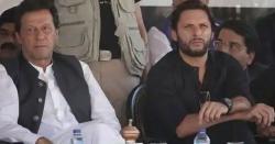 خیبر پختونخوا میں عمران خان کے ویژن کے مطابق کام نہیں ہوسکا، شاہد آفریدی