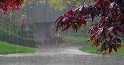 بارشیں اورژالہ باری ۔۔۔محکمہ موسمیات نے قوم کوخوشخبری سنادی