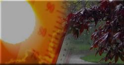 سورج کا پارہ ہائی  ، کن کن شہروں میں شدید گرمی ہو گی ؟کہاں کہاں بادل برسیں گے،  موسم کی تازہ ترین صورتحال