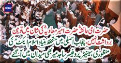 """پنجاب اسمبلی میں """"تحفظ بنیاد اسلام ایکٹ"""" کی منظوری،سینیٹر پروفیسر ساجد میر بھی میدان میں آ گئے"""