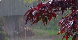 پاکستان سخت موسلا دھار بارشوں کیلئے تیار ہو جائیں ، 46سالہ ریکارڈ توڑنے والا سسٹم پاکستان میں داخل